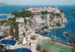 LE ROCHER DE MONACO VU DU JARDIN EXOTIQUE (dil260) - Monaco