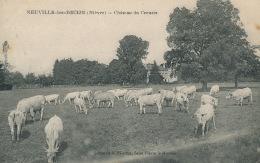 NEUVILLE LES DECIZE - Château Du Creuzet (vaches Au Pâturage)- Cachet De L'Imprimerie FLANDRIN à SAINT PIERRE LE MOUTIER - Sonstige Gemeinden