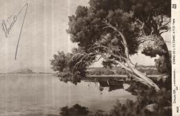 99754 - Salon 1912   J.Garibaldi    Etang De L'Estomac A Fos Sur Mer  (13) - Musées
