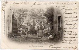 Ferme En Auvergne - Attelage Boeufs  (88856) - Frankrijk