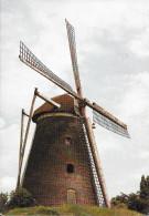 België/Belgique, Molenbeersel, Zorgvliet-Molen Truyen, Ca. 1980 - Kinrooi
