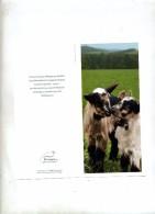 Carte Double Chevre - Animaux & Faune