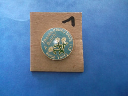 """PIN´S -  SCOUTISMES - Huron Valley Girl Scout Coucil """" Thanks A Bunch  ! """" - Voir Photo ( 1 ) - Associations"""