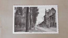 Buggenhout Opdorp Gemeentehuis En Dries - Buggenhout