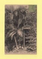Nouvelles Hebrides - Interieur De La Brousse - Ile Auba - Cpa Avec Decollement Dans Les Coins - Vanuatu