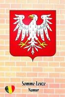 Carte Postale, Armoiries, Coat Of Arms, Heraldry Of The World, Belgium (Namur), Somme-Leuze - Postcards