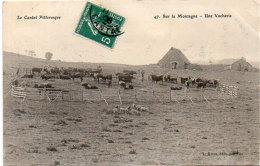 Le Cantal Pittoresque - Sur La Montagne - Une Vacherie  (88913) - Non Classificati