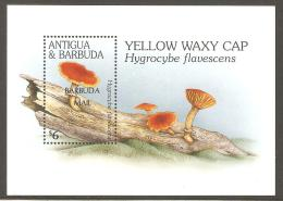 BARBUDA  1995  MNH  Mushrooms - Champignons