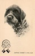 Griffon D Arret A Poil Dur.....edit Agence Gutenberg  Marseille... - Dogs