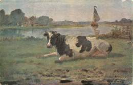 VACHE    ILLUSTRATEUR - Koeien