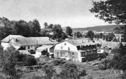 CPSM - Environs De CORCIEUX (88) - Aspect De L'Hospice De VICHIBURE En 1950 - Corcieux