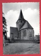 Chaussée-Notre-Dame.  Eglise Notre-Dame ( XIII è S.) - Soignies