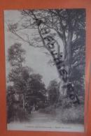 Cp Porto Novo Route De Louho N 7 - Dahomey