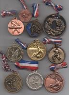 Lot De 10 Médailles Sport Judo France - France