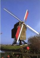 MOULBAIX (Hainaut) - Molen/moulin/mill/mühle - Moulin De La Marquise. Image Historique: 1989 (avant La Restauration) - Ath