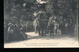 75 ---  Jardin Zoologique D'Acclimatation De Paris -- Promenade Sur Les Elephants - Parchi, Giardini