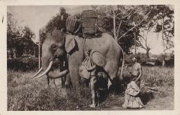ASIE - VIET NAM - INDOCHINE  - LES ARTS COLONIAUX  PARIS 1931 - Eléphant Sacré - Vietnam
