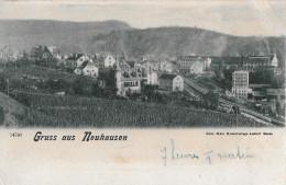 GRUSS AUS NEUHAUSEN → Dorfansicht Von Den Rebbergen Her 1903 - SH Schaffhausen