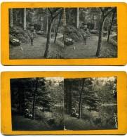 2 Photos  Stéréoscopiques - 88  Vosges   -  Pierre Et Jean  Rémond  - Lac De La Maix - Photos Stéréoscopiques