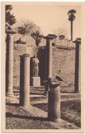 France, VAISON-la-ROMAINE, Portique De Pompee: Angle Est Avec Statue De Sabine, Unused Postcard [18442] - Vaison La Romaine