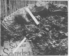 Sculpture Allemande Dragon Sculpté Dans L'argile Ou La Glaise 1 Photo 1914-1918 14-18 Ww1 - War, Military