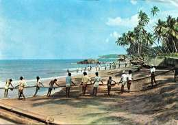 NECOMBO - SRI LANKA - Drag Net Fishing, Gel., 2 Sondermarken - Sri Lanka (Ceylon)