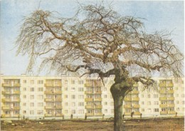 Dwelling Houses In Kengarags - Riga - Latvia USSR - Unused - Lettonie