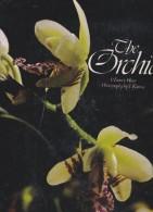 ORCHID SUPERBE LIVRE SUR LES ORCHIDEES LIVRE EN ANGLAIS - Livres, BD, Revues