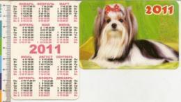 Pocket Calendar - Russia - 2011 - A Dog - Calendarios