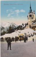 ROMANIA   SINAIA  CASTELUL PELES  (Sporturi)  1926  - Old,rare Postcard - Roumanie