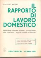 IL RAPPORTO DI LAVORO DOMESTICO GAETANO VICINI PIROLA EDITORE - Diritto Ed Economia