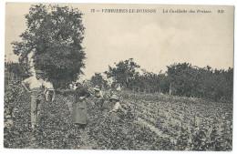 VERRIERES-LE-BUISSON (Essonne, 91) La Cueillette Des Fraises - Belle Animation - Verrieres Le Buisson