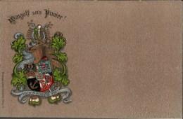 ! Alte Ansichtskarte Studentika, Wingolf Sei's Panier, Wappen Der Burschenschaft, Couleurkarte, Verlag Kraus Würzburg - Schulen