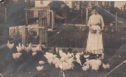 Real Photo 1900-1910 - Lady Woman Poultry Hen Birds Henhouse Farming - - Written - Poor Condition : See 2 Scans - Etats-Unis