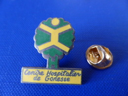 Pin's Hopital - Centre Hospitalier De Gonesse - 95 - Médical Clinique - Arbre (MA3) - Medical