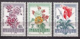 Belgium Flowers 1960 Mi#1179-1181 Mint Never Hinged