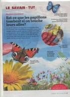 Page Coop Theme Papillon - Livres, BD, Revues