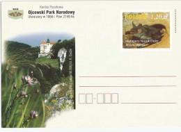 Poland - Postal Stationary - Bat (Myotis Myotis ) - Vleermuizen