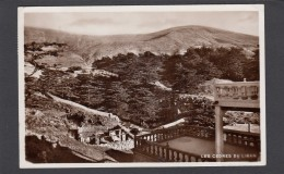 LES CEDRES DU LIBAN VERS 1939. - Libanon