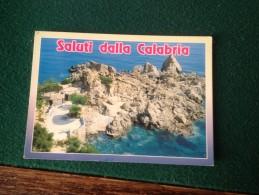 Cartolina Saluti Dalla Calabria Viaggiata 1994 - Unclassified