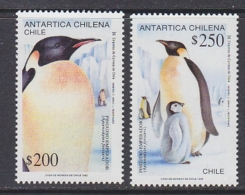 Chile 1992 Antarctica / Penguins 2v ** Mnh (31699C) - Unclassified