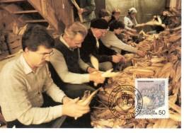 LIECHTENSTEIN  Carte Maxi  1989 Coutumes D Automne Egrenage De Mais - Agricoltura