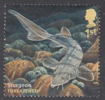 GREAT BRITAIN - 2014   Sustainable Fish - European Sea Sturgeon (Acipenser Sturio) 1st SG3617 Used