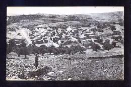 Palestina. Betania *Bethanien* Nueva. - Palestina