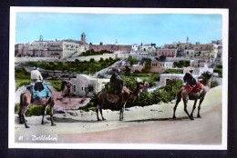 Palestina. Bethléhem *Bethléem - Betlemme* Nueva. - Palestina