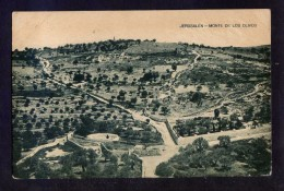 Palestina. Jerusalem *Jerusalén. Monte De Los Olivos* Circulada 1925. - Palestina