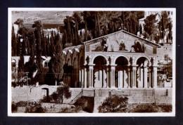 Palestina. Jerusalem *Getsemani. La Basílica* Escrita. - Palestina