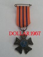 .medal - Medaille - Avondvierdaagse ( 1 ) - Netherland