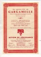 Action De Jouissance Au Porteur Réservée Aux Souscripteurs Actuels D'une Caisse Estivale GARGAMELLE Vins Henri Maire - Banca & Assicurazione