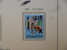 GUYANA 1982. FOOTBALL WORLD CUP. SPAIN-82 . IVERT 698  MNH** - Guyana (1966-...)